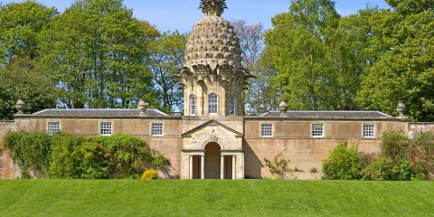 The Pineapple Dunmore
